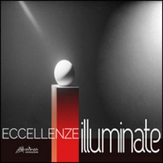 Eccellenze illuminate. Light communication in art and design. Ediz. italiana e inglese - D'Egidio A. A. (cur.); Mastroianni R. (cur.); Vallini W. (cur.)