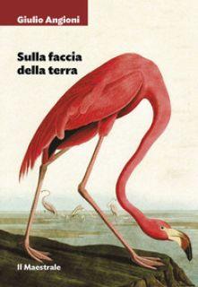 Sulla faccia della terra - Angioni Giulio