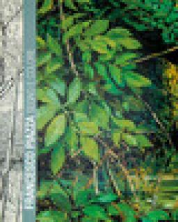 Francesco Piazza. Segno e colore. Catalogo della mostra (Treviso, 20 settembre-12 novembre 2017). Ediz. illustrata - Fondazione Piazza (cur.)