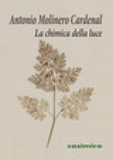 La chimica della luce - Molinero Cardenal Antonio