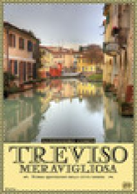 Treviso meravigliosa. Storie quotidiane della città gioiosa - Comin Alessandro