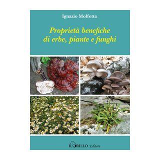 Proprietà benefiche di erbe, piante e funghi - Molfetta Iganzio