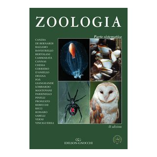 Zoologia. Parte sistematica - De Bernardi F. (cur.)