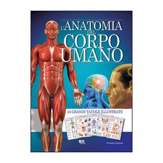 L'anatomia del corpo umano -