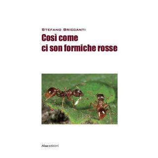 Così come ci son formiche rosse - Briccanti Stefano