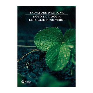Dopo la pioggia le foglie sono verdi - D'Antona Salvatore; Rossi D. (cur.)